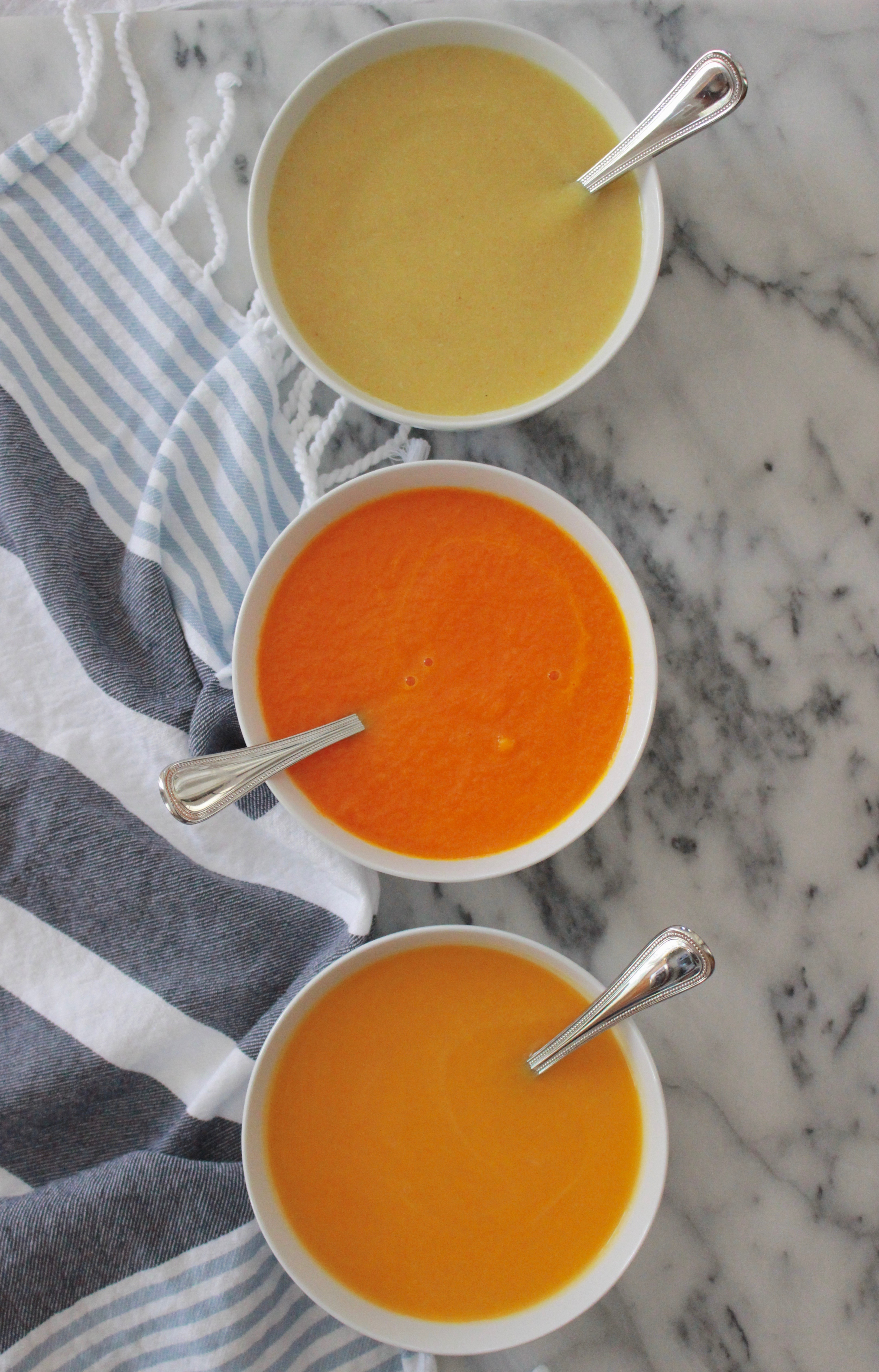 Pureed Vegetable Soups